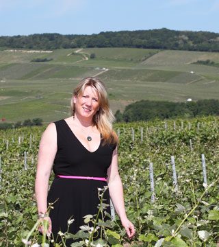 Balade vignes Gîte Vandières 2